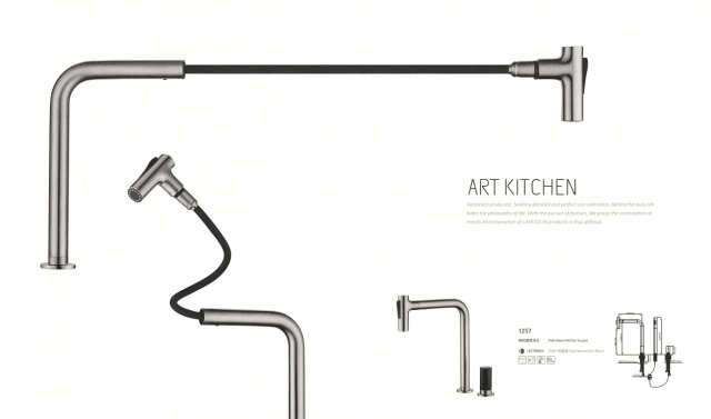 kitchen faucet with pull out spray